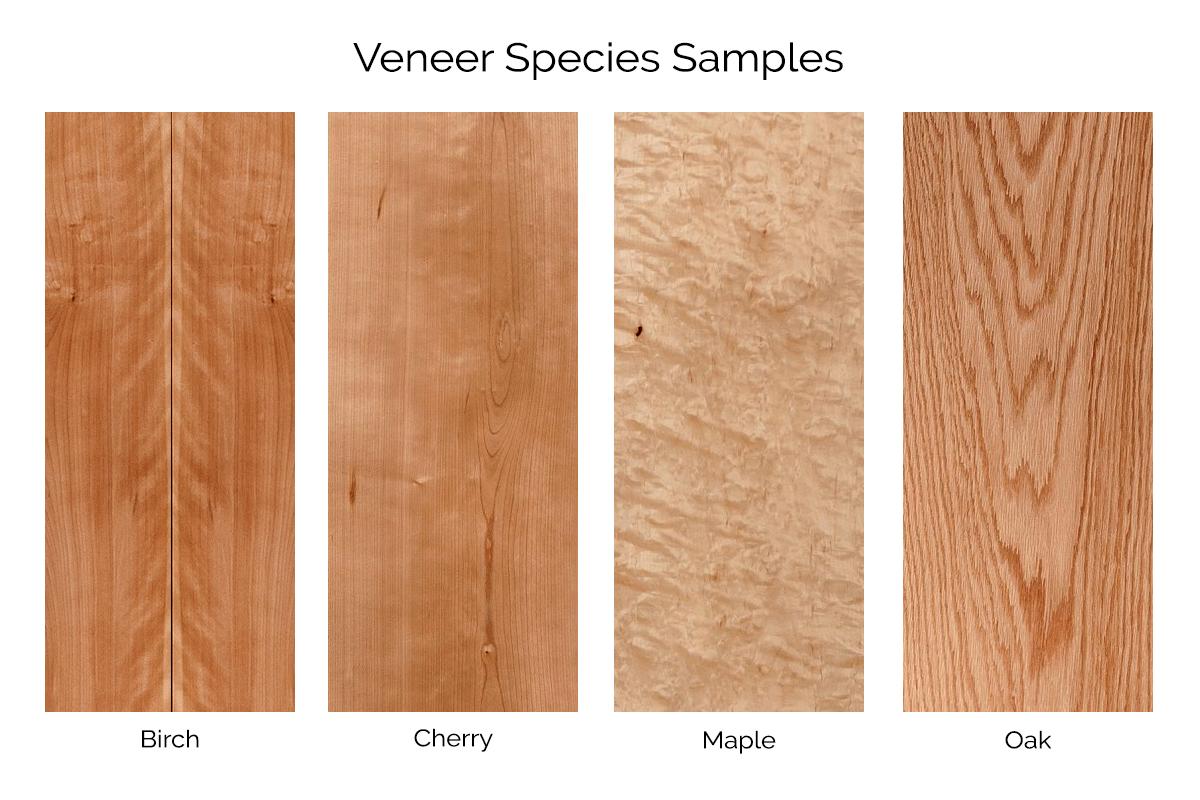 veneer-gallery