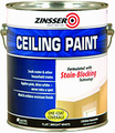 Zinsser 260967 1G White Ceiling Paint and Primer