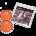Zipwall GD2 Grip Discs 2PK