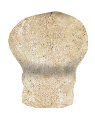 "Marazzi Western Stone Canyon City (Beige) 1"" x 6"" Cove Base In Angle"