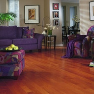 Anderson Hermosa Plank Brazilian Hickory Sage