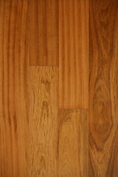Amazon Wood Vila Do Conde Brazilian Cherry Natural