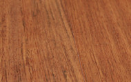 "Pravada Hardwood Exotics Collection 5"" Brazilian Cherry"