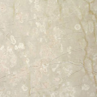 "Interceramic Marble Botticino Fiorito Polished 12"" x 12"""