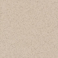 "Daltile Porcealto Marrone Cannella Unpolished 8"" x 8"" 881P-CD77"