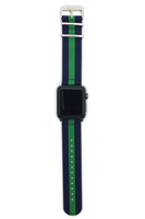 Blue & Green Apple Watch Straps 38mm