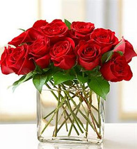 Red One Dozen Modern Roses