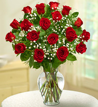 18 Stem Red Rose Elegance Premium Long Stem