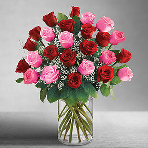 Ultimate elegance 2 dozen long stem pink and red roses mightylinksfo