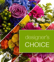 Designer's Choice - Bright and Cheery