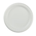 "Paper Plates Heavyweight 9"" 500/case"