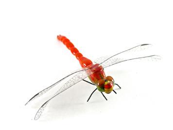 Matsumoto Kurosawa Dragonfly