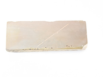Ozuku Lv 3,5 (a1563)