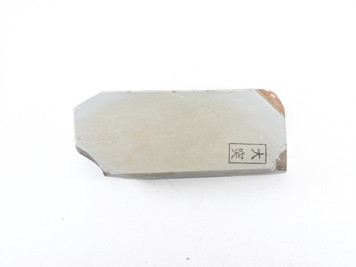 Ozuku type 100 lv 5+  (a1608)