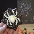 Spider on Web (Pieces) Chocolate Mould
