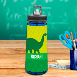 Dino and Me Green Sports Water Bottle