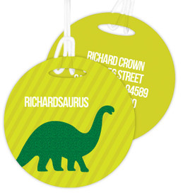 Dino And Me - Green Kids Luggage Tags