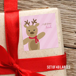 Sweet Raindeer On Pink Gift Label