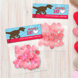 Dino Love Favor Bags