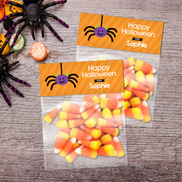 Cute Spider Halloween Treat Bags