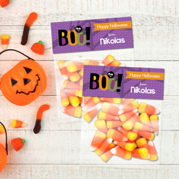 Boo Spider Halloween Treat Bags