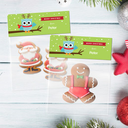Xmas Baby Blue Owl Treat Bags