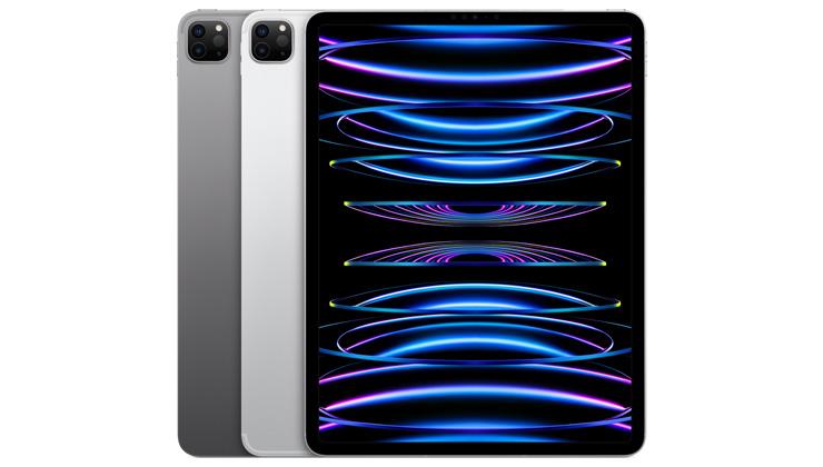 iPad Pro 12.9 inch (2020) Cases