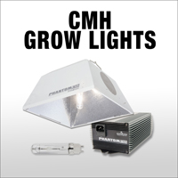 neh-web-category-cmh-lights.jpg