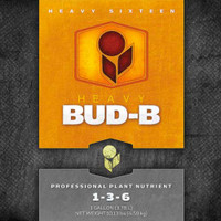 Heavy 16 Bud B 4L