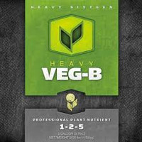 Heavy 16 Veg B 4L