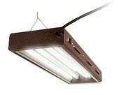 HydroFarm Designer T5 Fluorescent Light 2' x 2 w/bulbs