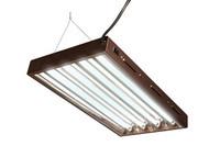 HydroFarm Designer T5 Fluorescent Light 2' x 4 w/bulbs