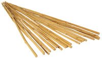 Bamboo Stakes 2ft - 25pk