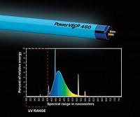 Hortilux PowerVEG T5 2' 460 Blue Grow Light