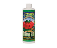 FoxFarm Grow Big Soil 16oz