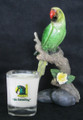 Green Parrot SQUARE Shot Glass