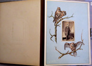 Large  Antique  1880s Victorian Leather Photograph Album with Owls 98 Photos