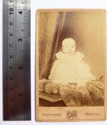 Victorian Carte de Visite Card Photograph by Protheroe Bristol