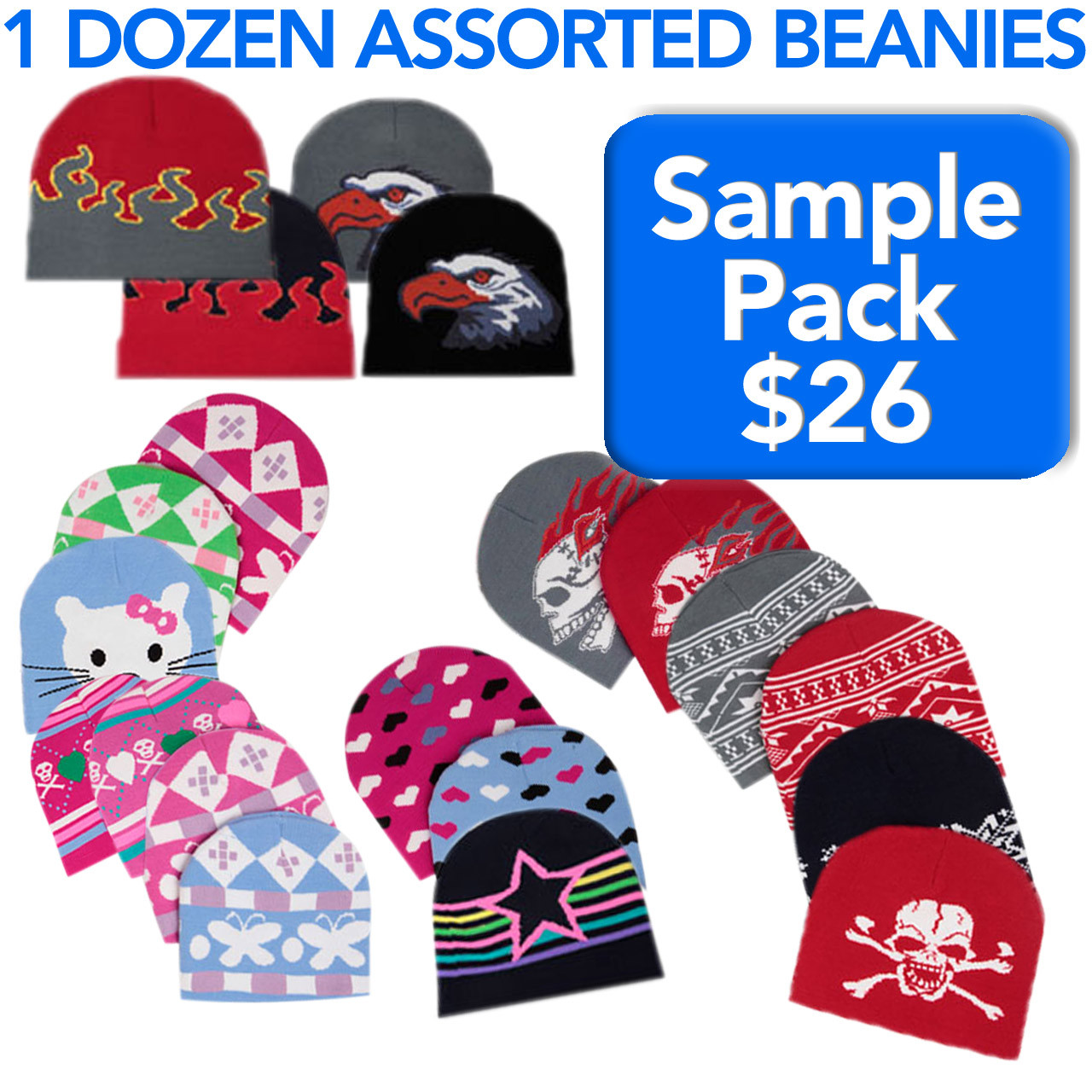 Wholesale Beanies Sample Pack BSP1 (12 pcs.) One Dozen Assorted Beanies