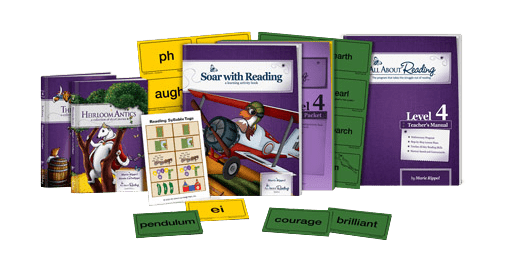 All About Reading Level 4 sample