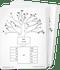 AAS Level 7 Word Trees