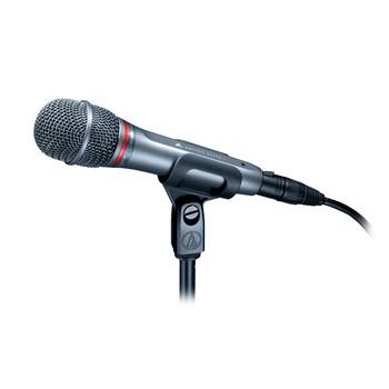 AE6100 Hypercardioid Dynamic Handheld Microphone
