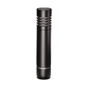 AT2021 End-Address Cardioid Condenser Microphone