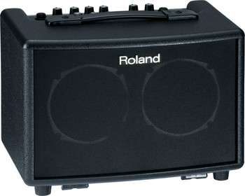 Roland Battery-Powered Acoustic Chorus Amp (Rosewood)