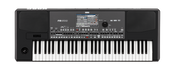 Korg Pa600 61 Key Professional Arranger