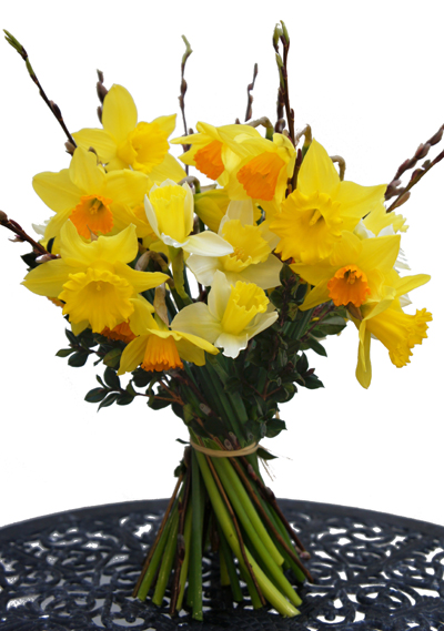 Spring Daffodils - Seasonal British Flowers Bouquet