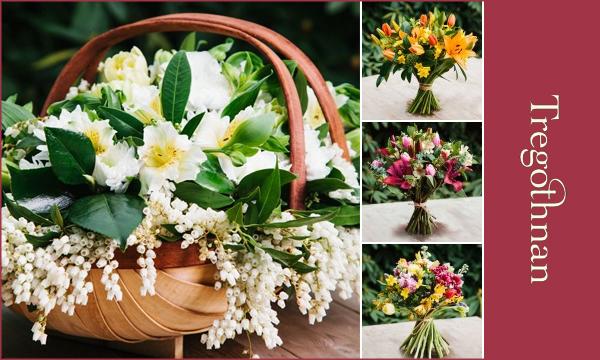 tregothnan-new-flower-collection.jpg