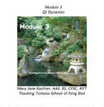 Module 3: Qi Dynamics