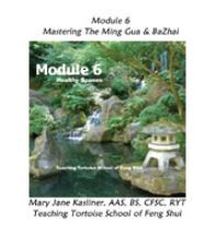 Module 6: The Power of Directions: Working the Ming Gua & Bazhai Methods