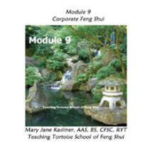Module 9: Corporate Feng Shui